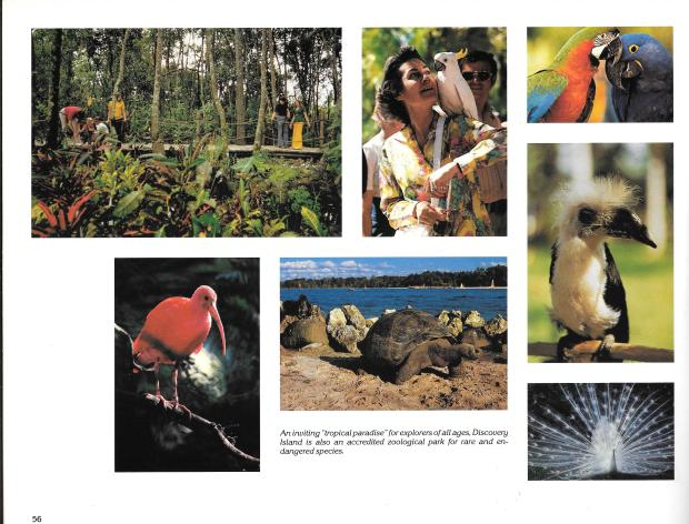 Disney Guidebook Pictures0014